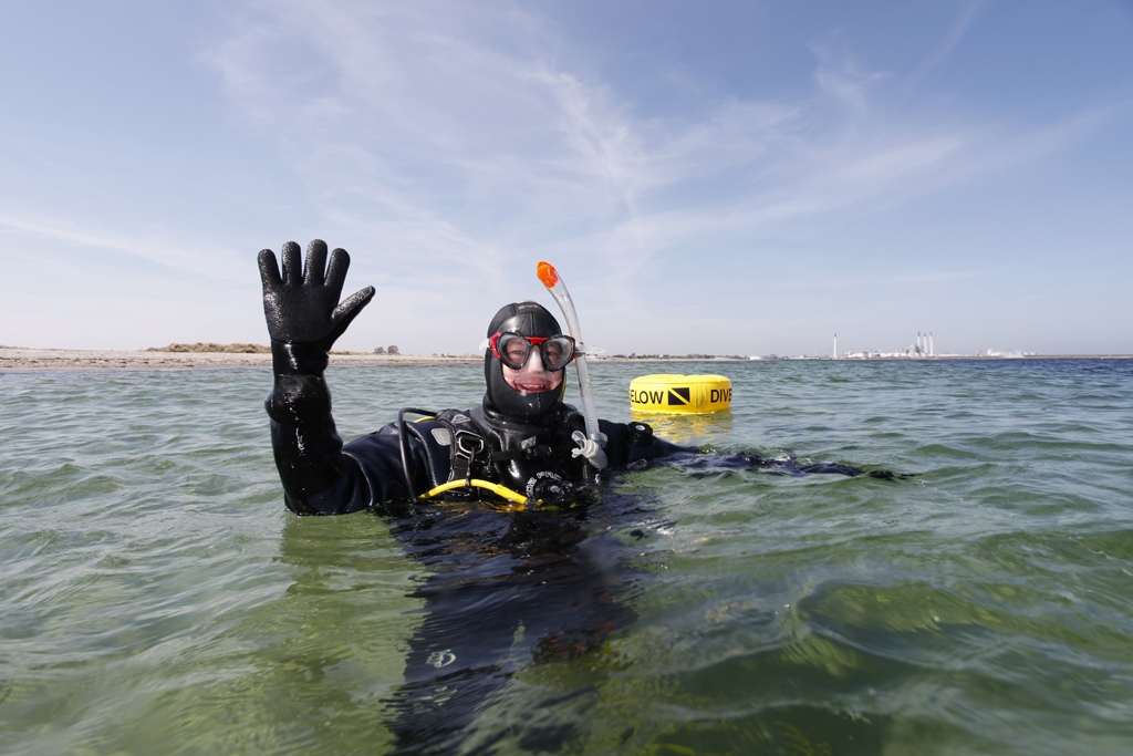 Dejligt dyk på Amager Strand. Foto Tom Pedersen